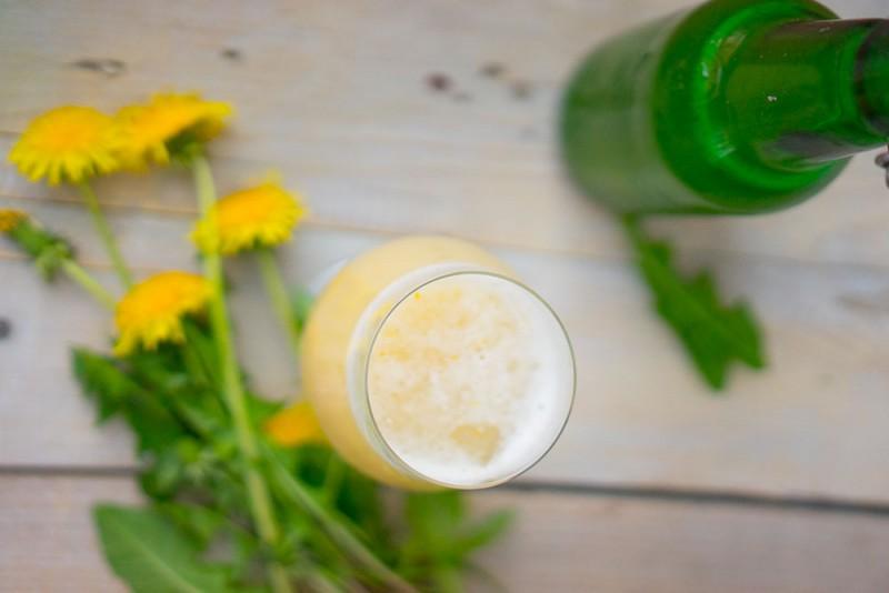 piwo z mniszka