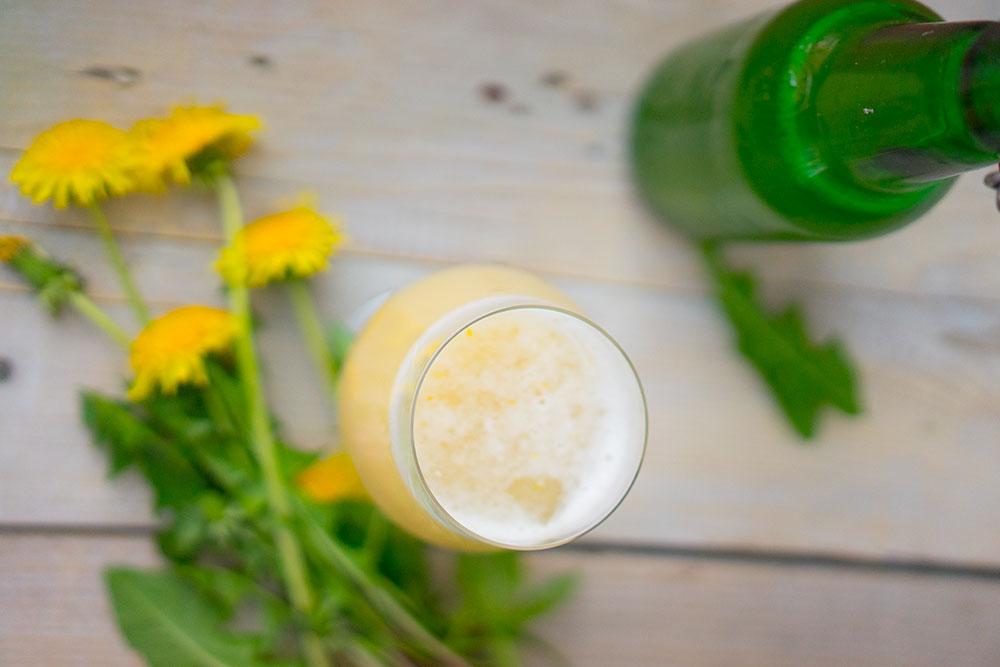 Stwórzmy złote piwo z mniszka. To takie proste i szybkie!