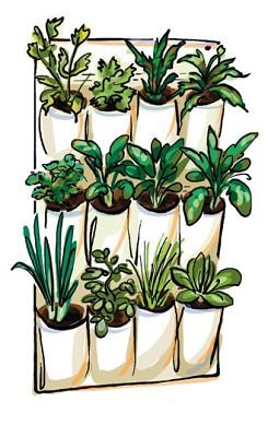ogród wertykalny kieszenie