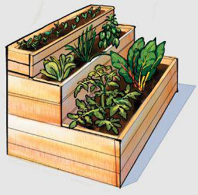 ogród wertykalny schodki