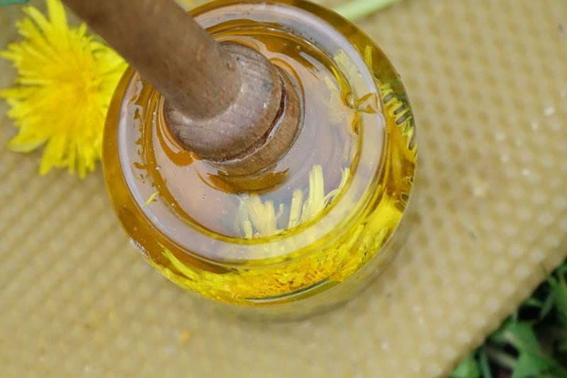 miód mniszkowy bez cukru dla dzieci