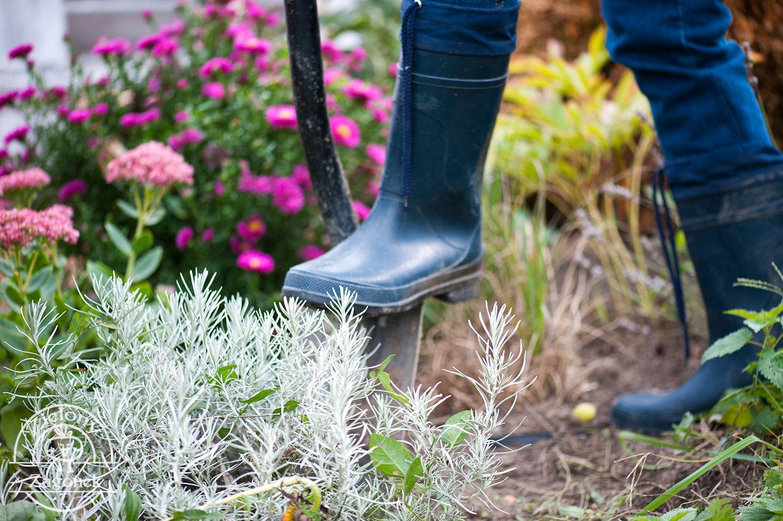 Jak uprawiać zioła zimą na parapecie? Triki, które musisz znać